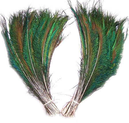 Peacock Swords Cut 12-14