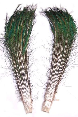 Peacock Sword Feathers, 30