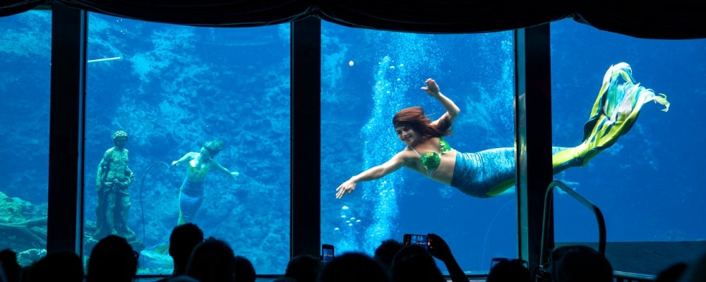 Mermaid bar giant aquarium weeki wachee
