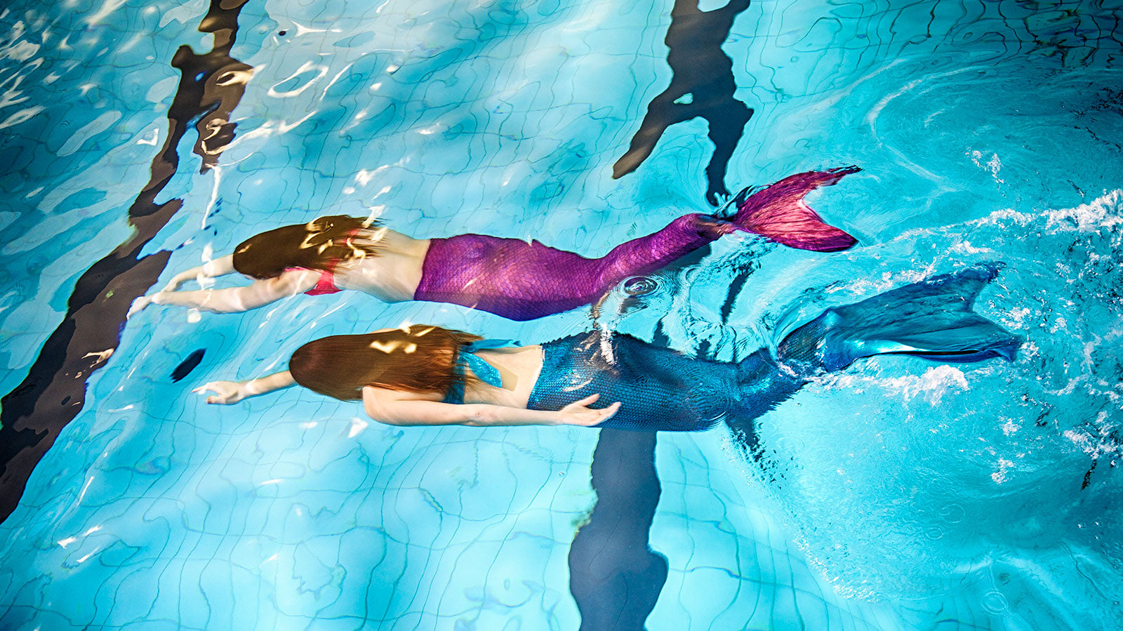 Real mermaids swimming