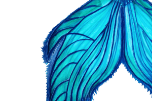 Tail mermaid tail fluke blue teal