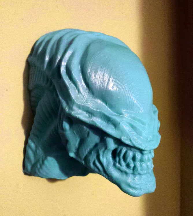 3D Print Time Lapse: Large Xenomorph Head