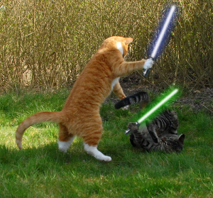 Jedi cats with lightsabers