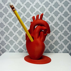 3D Printed Anatomical Heart Pencil/Pen Holder-Red