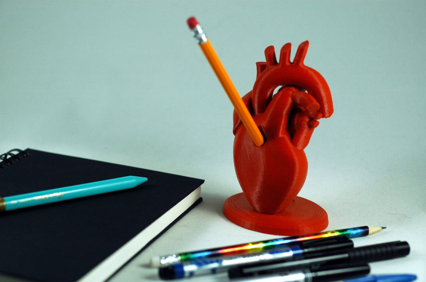 3D Print Anatomical heart pencil holder red filament-perfect for fans of Buffy the Vampire Slayer