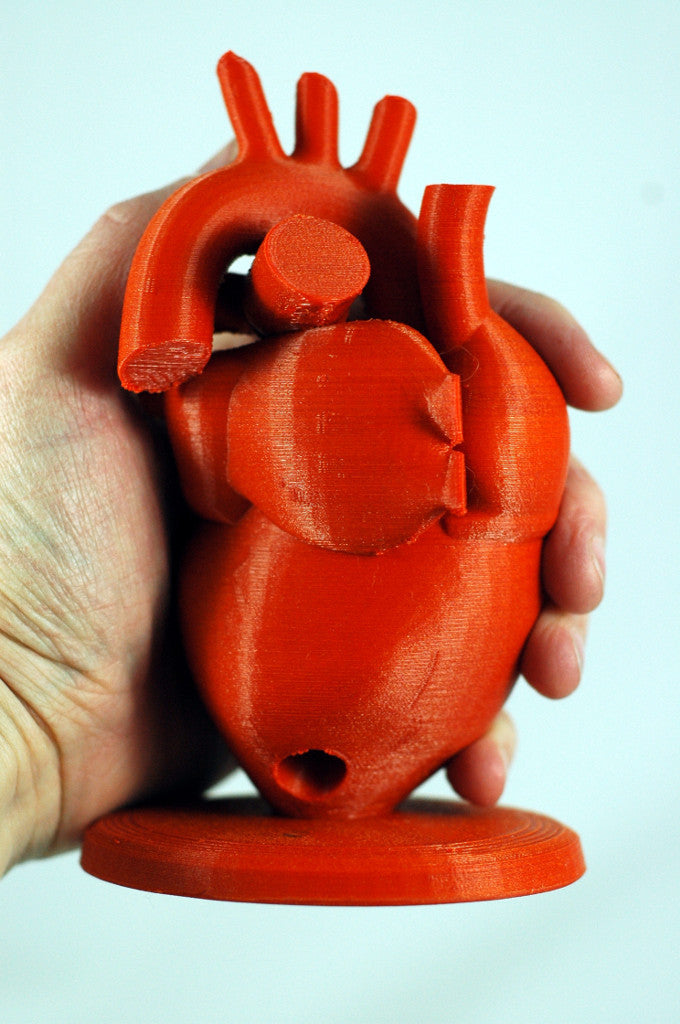 3D Print Anatomical heart pencil holder red filament