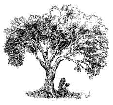 The Highly Esteemed Sidr (Beri) Tree – Simply the great food