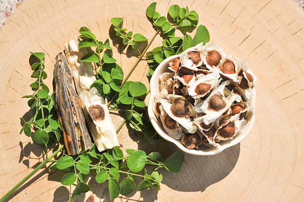 Get FREE Moringa seeds with every order