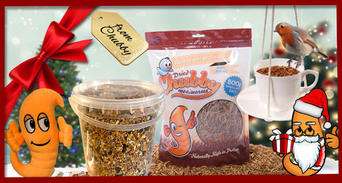 Win a Chubby Mealworms Wild Bird Gift Set