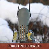 Sunflower Hearts for Wild Birds