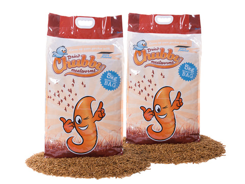 10Kg Chubby Dried Mealworms (Temporary Clear bags)