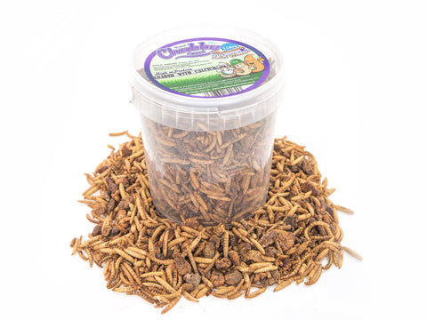 1 Litre Chubby Dried Mixes (Mealworms & Calci Worms)