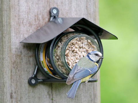 CJ Wildlife Wicklow Peanut Butter Feeder