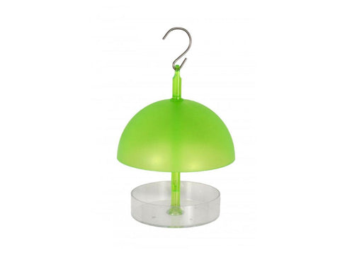 Supa Green Robin and Small Bird Feeder For Wild Birds