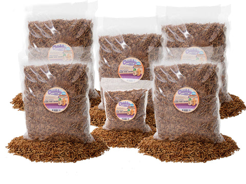 25.2Kg Chubby Dried Mixes (Mealworms & Calci Worms)
