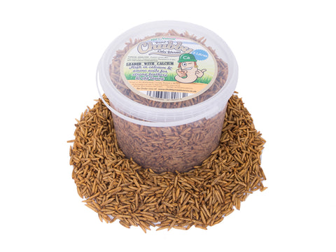 3 Litre Chubby Dried Black Soldier Fly Larvae