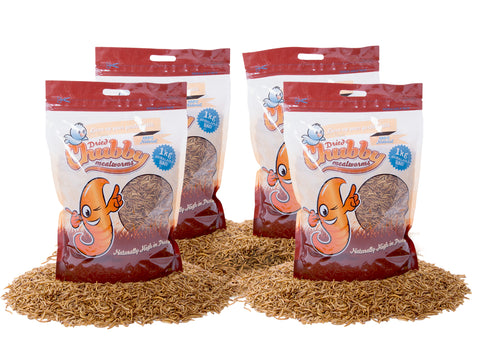 4Kg Dried Chubby Mealworms