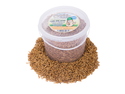 5 Litre Chubby Dried Black Soldier Fly Larvae