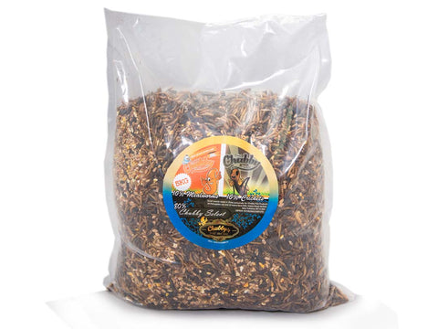 Chubby's Cricket Combo - 5Kg Wild Bird Seed, Mealworms & Cricket Mix