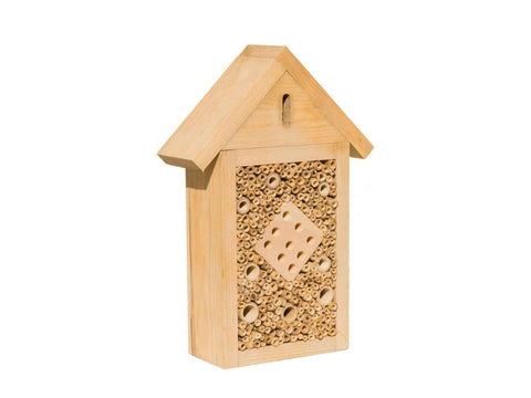 Natures Feast Wood Insect Box