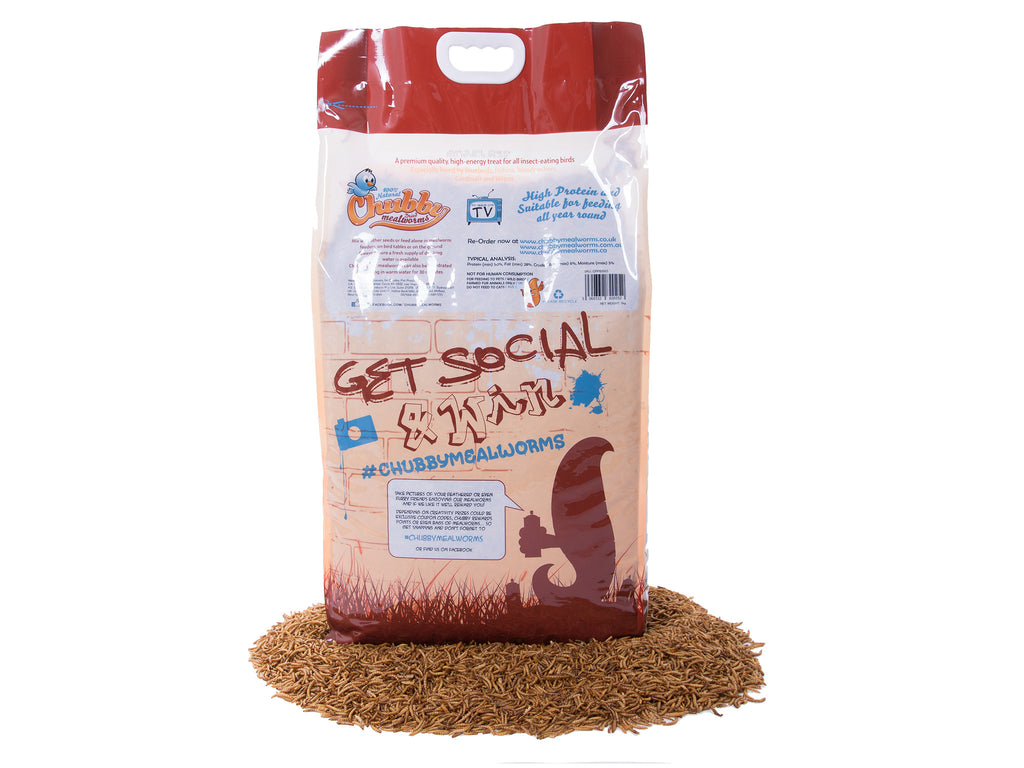 5kg Dried Chubby Mealworms