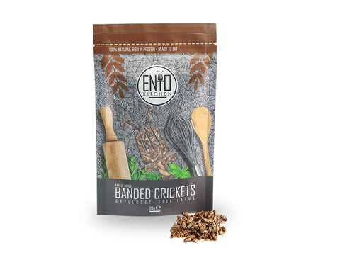 20g Edible Banded Crickets For Human Consumption