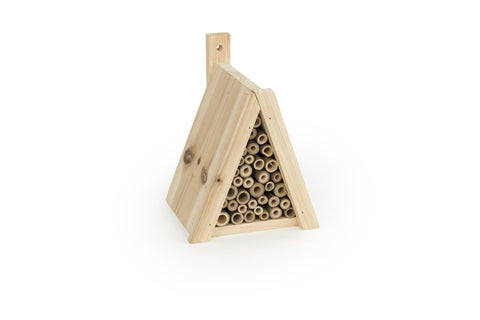 CJ Wildlife Tortuga Tipi Insect House