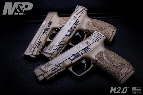 M&P45 M2.0 in Flat Dark Earth
