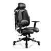 Hara Ergonomic Chair Nietzche 2H-V (Black with Patterns)