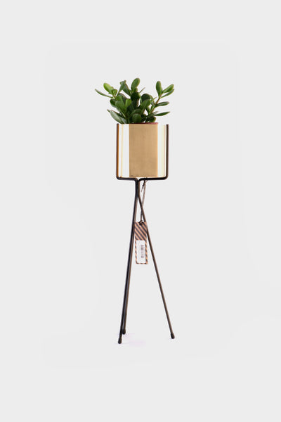 Ferm Living Plant Stand: Small -  - 1