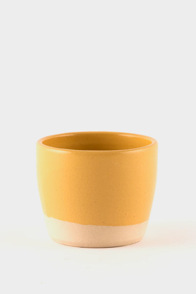 Dor & Tan Tea Bowl - Gorse Yellow