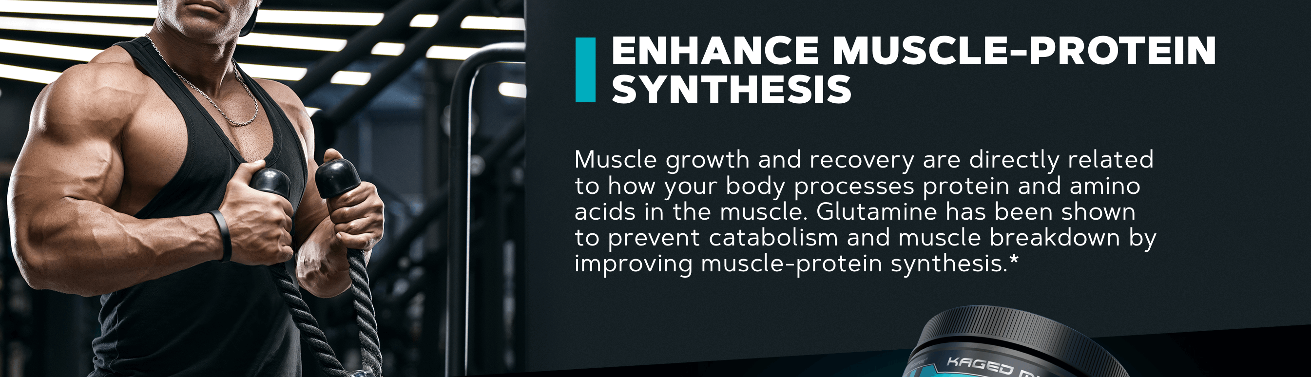 ENHANCE MUSCLE-PROTEIN SYNTHESIS Muscle growth and recovery are directly related to how your body processes protein and amino acids in the muscle. Glutamine has been shown to prevent catabolism and muscle breakdown by improving muscle-protein synthesis.*
