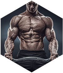 Best Training Supplements online by Kaged muscle