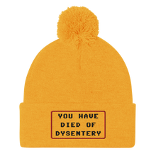 Load image into Gallery viewer, Dysentery Pom-Pom Beanie