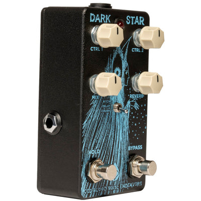 Old Blood Noise Endeavors - Dark Star Reverb