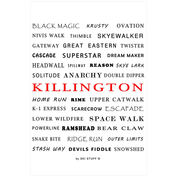 Killington Ski Trails White - Poster