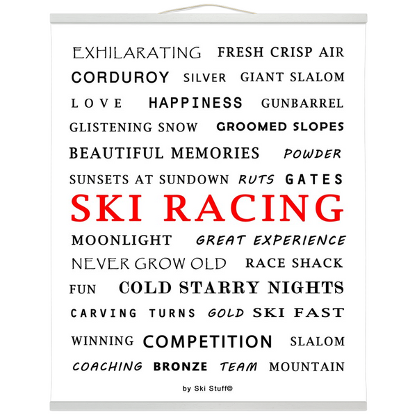 Hanging Canvas Print - Ski Racing