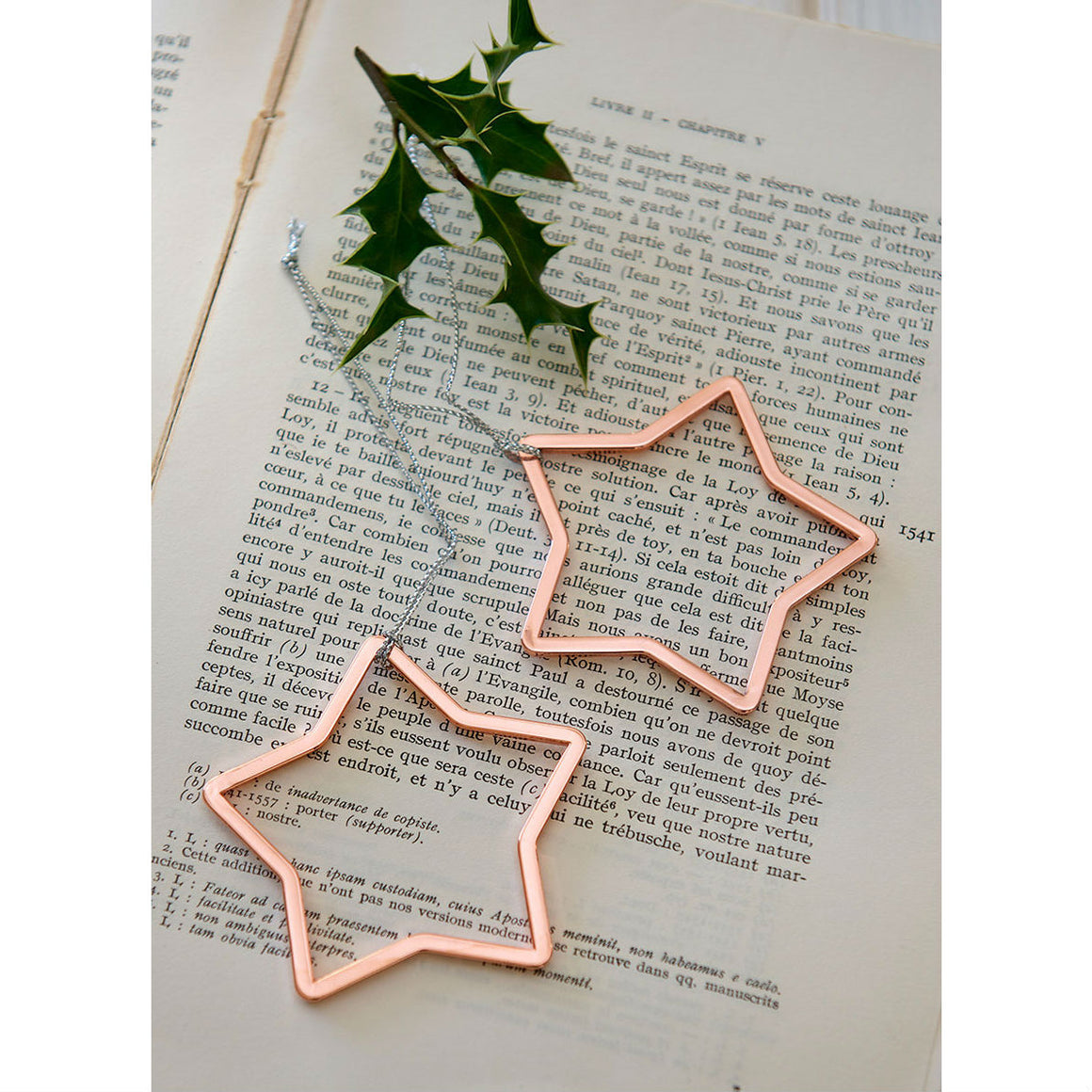 Set Of 2 Rose Gold Star Christmas Tree Decoration