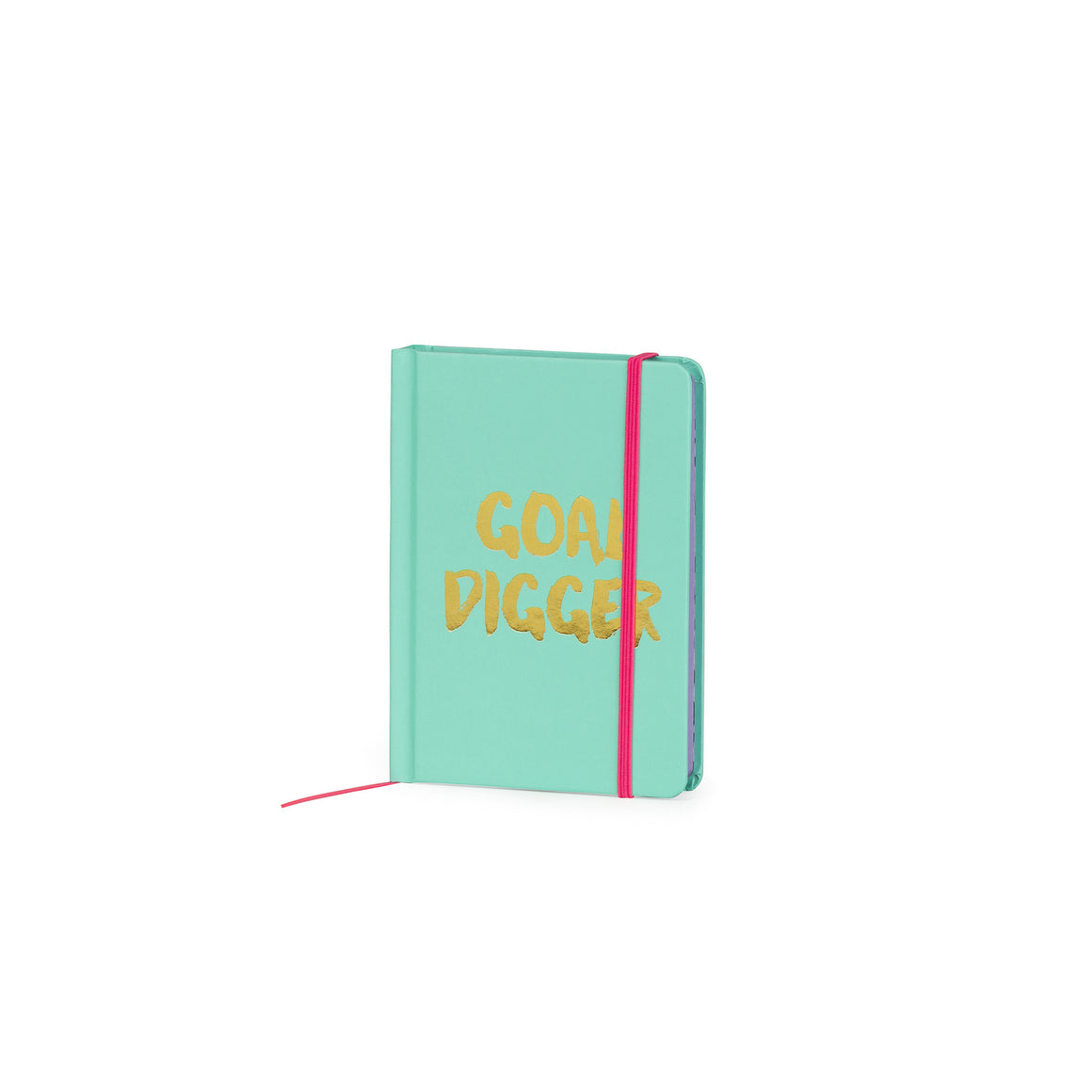 Goal Digger A6 Notebook - The Love Trees