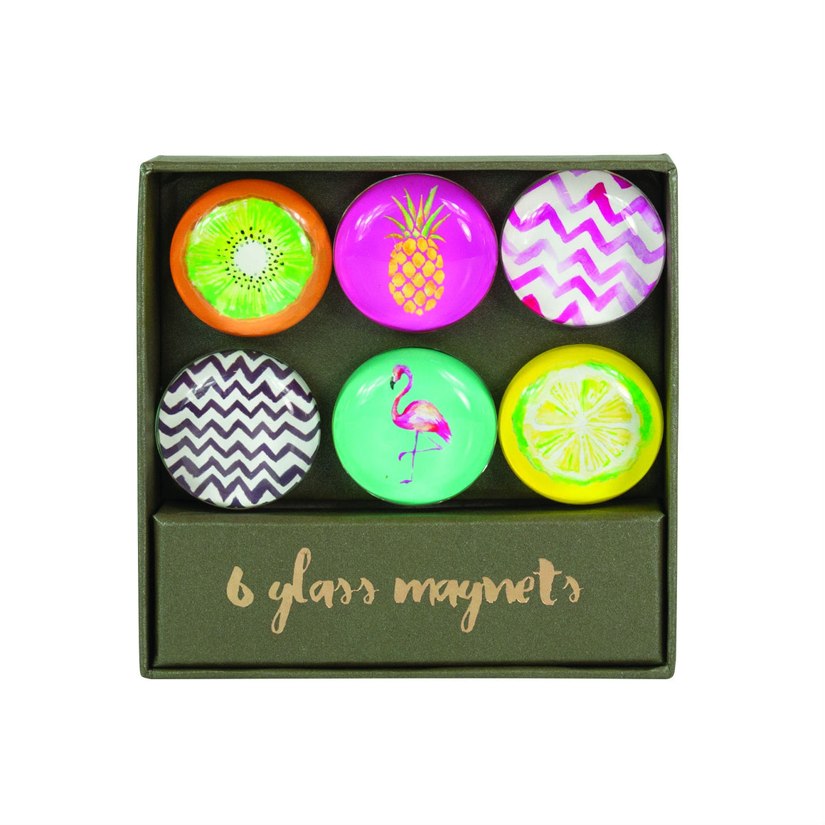 Totally Tropical Magnet Set