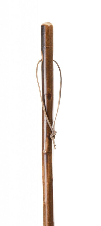 Free Form Sycamore Sturdy Walking Stick