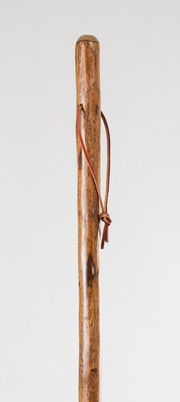 Free Form Sassafras Walking Stick