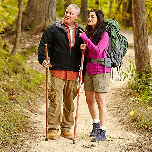 Most Popular Walking Sticks