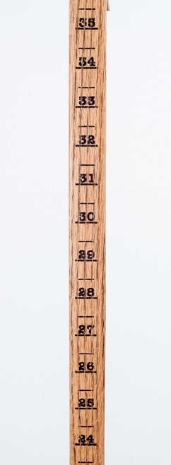 "52"" Snow Measuring Walking Stick"