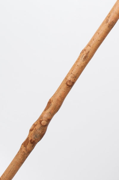 Free Form Ash Wood Walking Staff