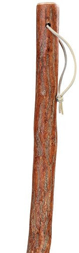Sassafras Walking Stick