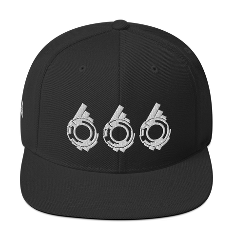 SECTION 666 SNAPBACK