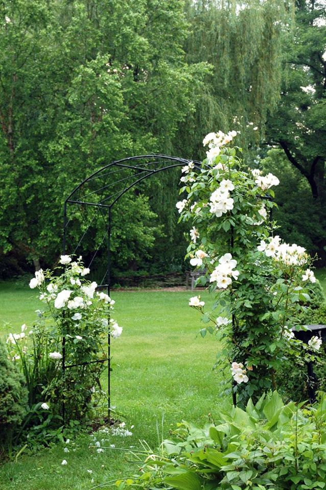 Solid Rod Monet Arch with Lattice - Henderson Garden Supply