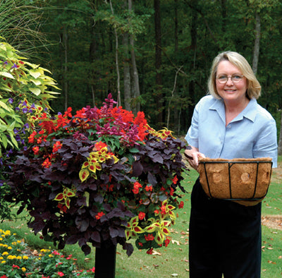 Pamela Crawford Single Tier Basket Planter and Liner Sets - Henderson Supply