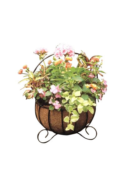 Cauldron Basket Planters With Coco Liners - Henderson Supply